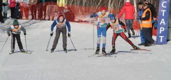 АНОНС!!! 28 февраля 2015 г. проводится 3-й традиционный Кубок Боровского кургана по лыжным гонкам среди общеобразовательных школ Раменского района.